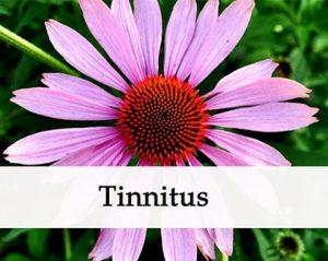 how to stop tinnitus
